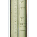 Mercury thermometer (Inv. 385)
